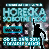 Divadlo Kalich Horečka sobotní noci