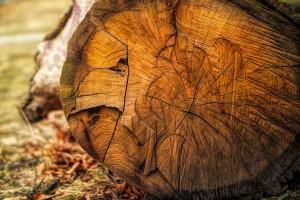 drevo_doplnky