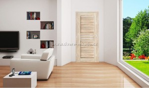dvere_erkado_1