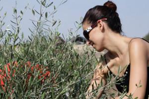 olive_oil_lush_01