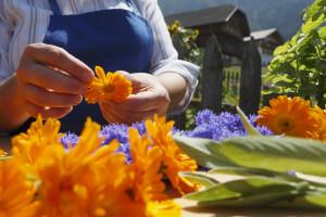 Südtirol, Seis, Juli 2009, Shooting: Kräuter und Garten, Südtiroler Bauernbund,