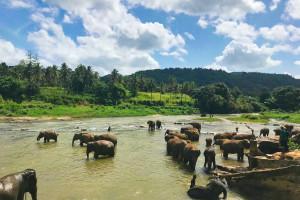 Rambukkana, Sri Lanka