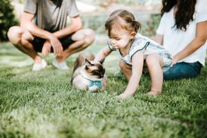 dítě a kočka unsplash